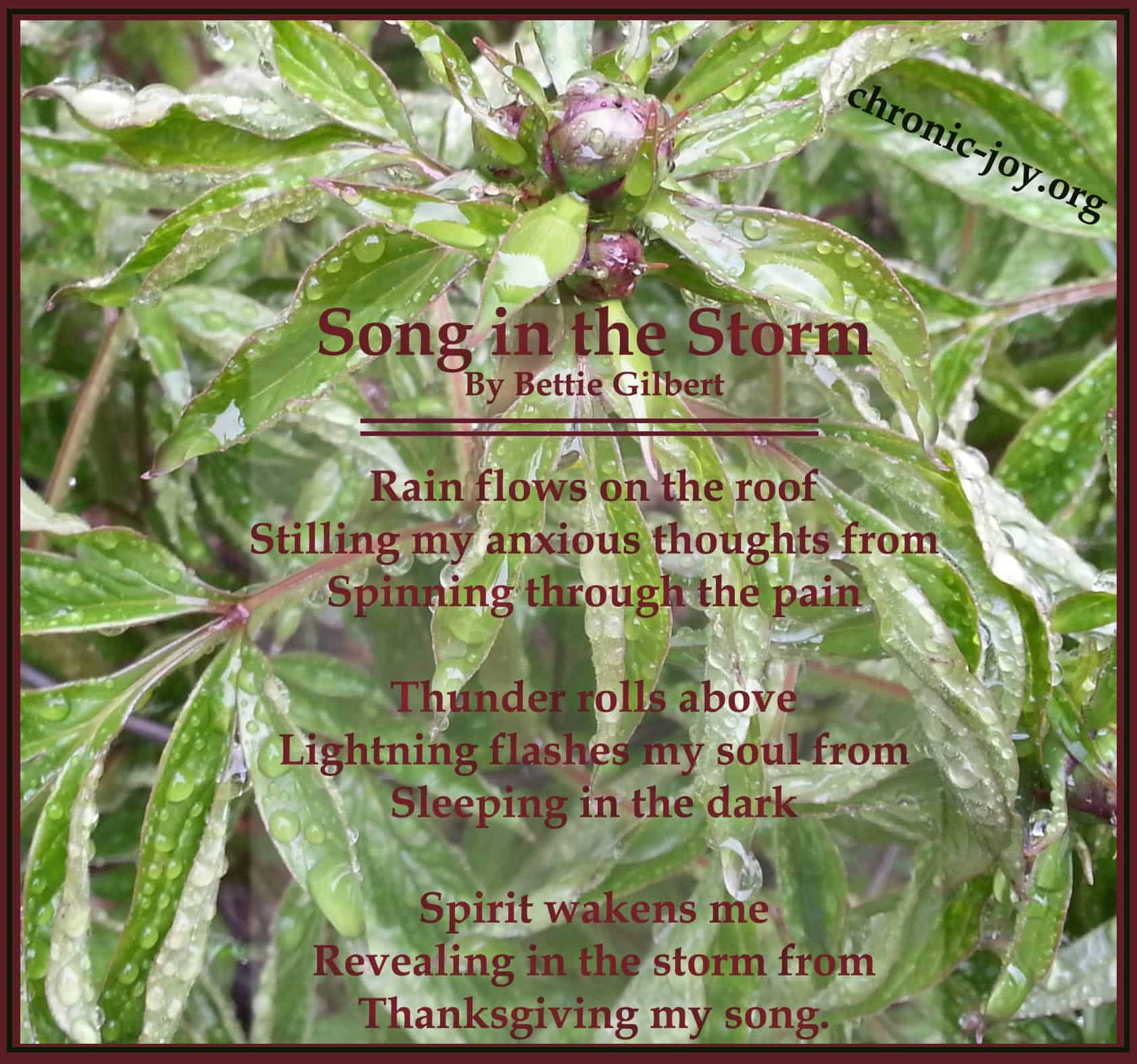 Song in the Storm
