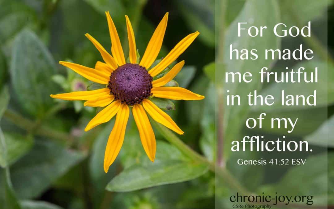 Fruitful in Affliction