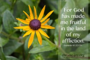 For God has made me fruitful in the land of my affliction.