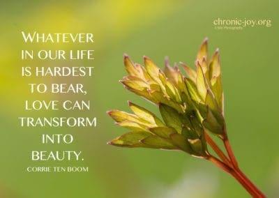 transform into beauty