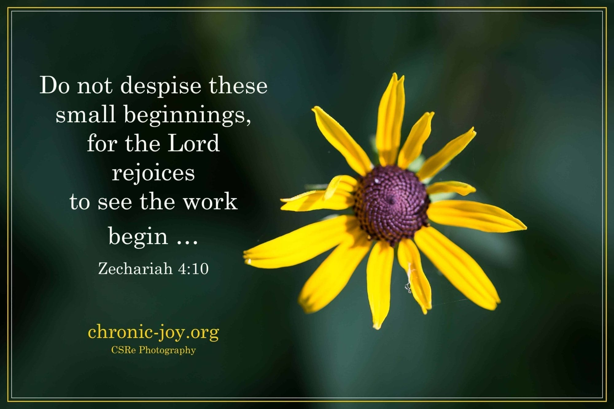 Do not despise small beginnings...