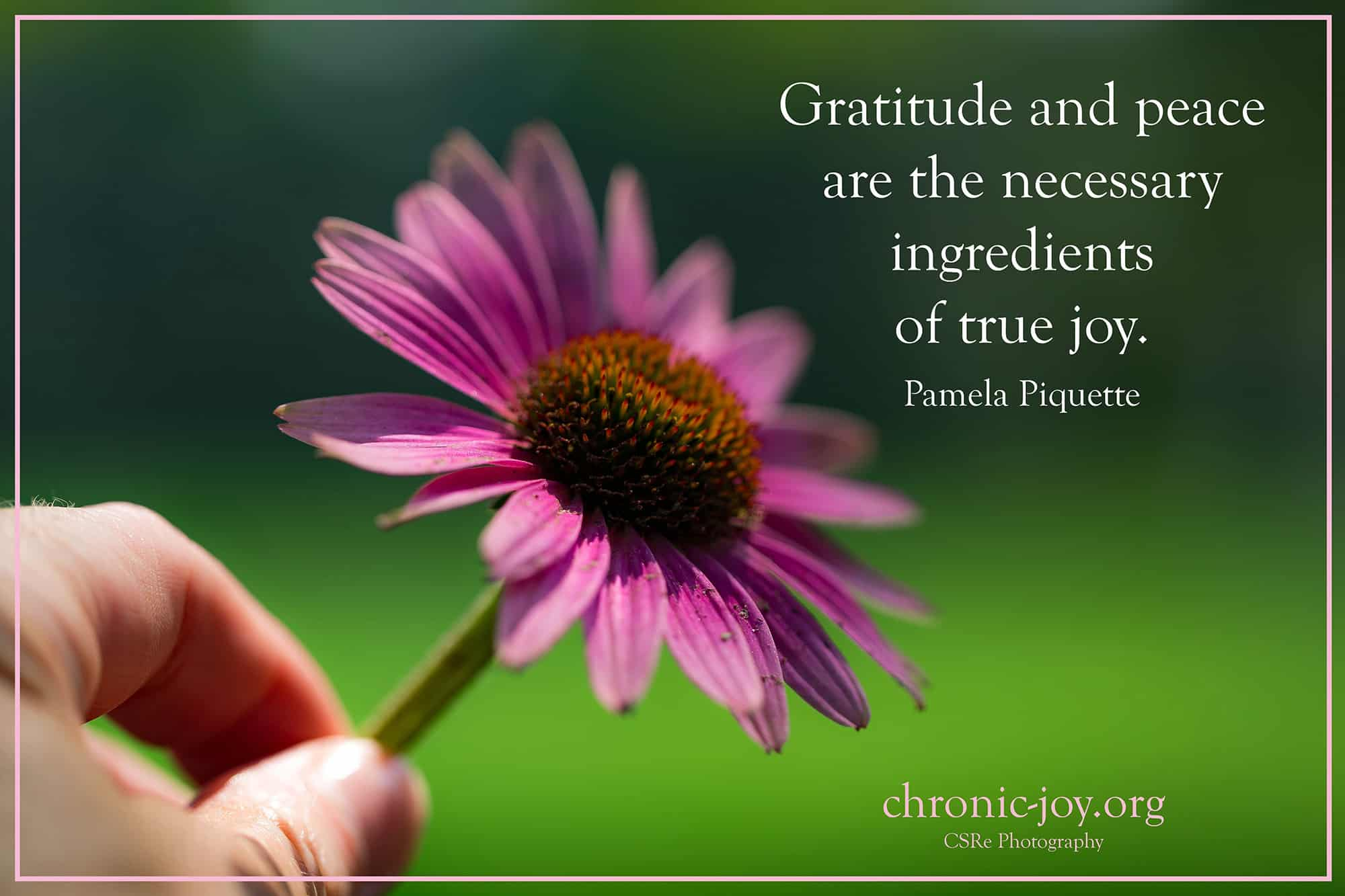 Gratitude and Peace