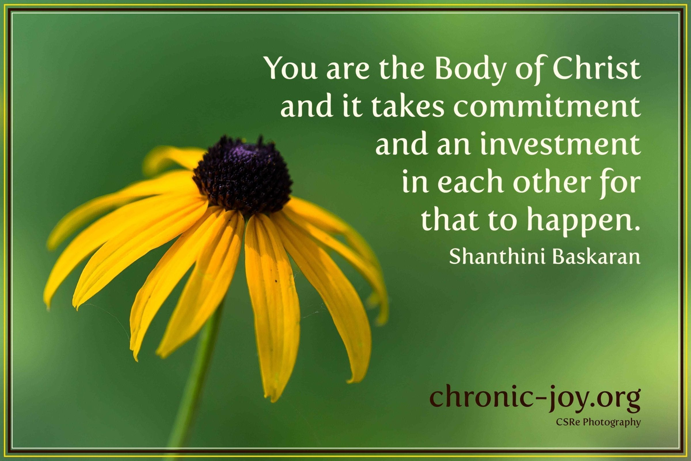 You are the Body of Christ - invest in each other.