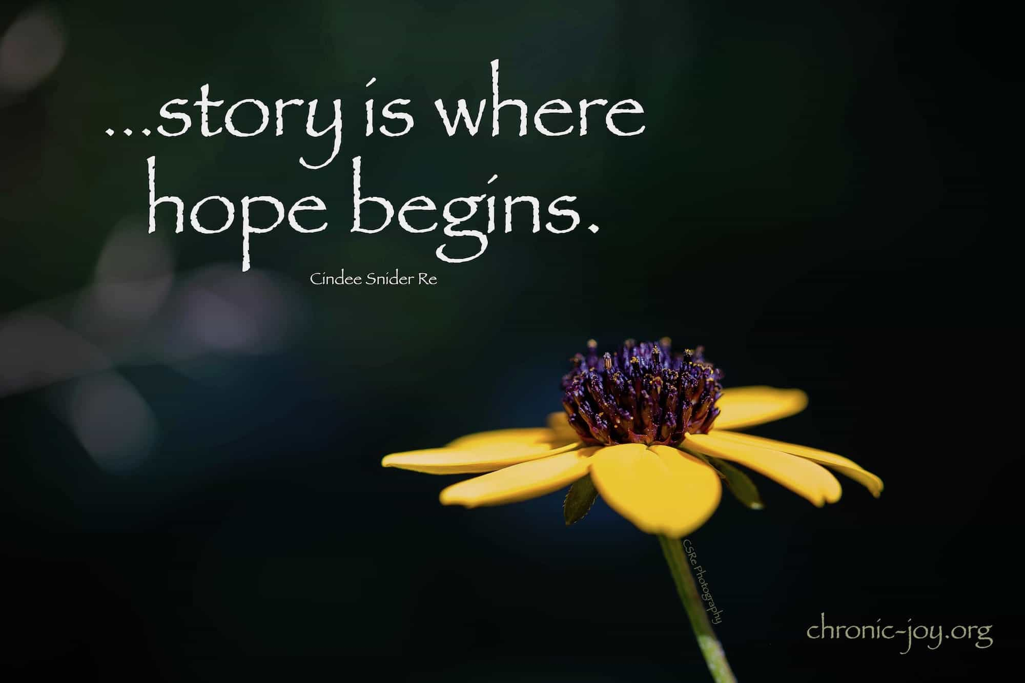 ...story is where hope begins.