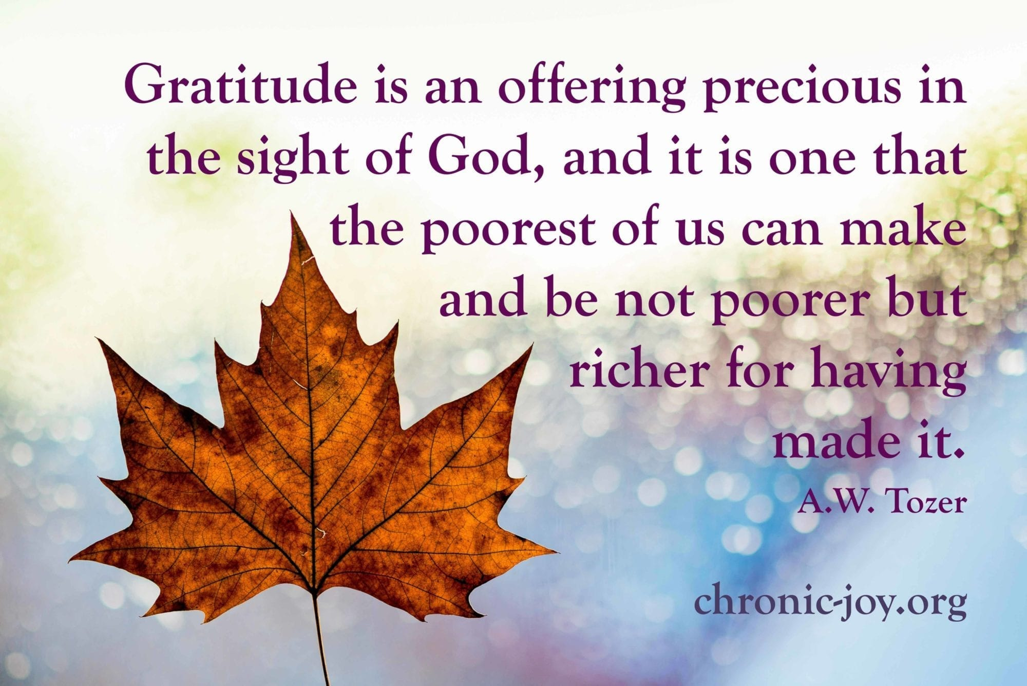 We are richer because of gratitude.