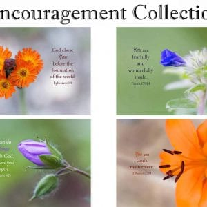 Encouragement Collection