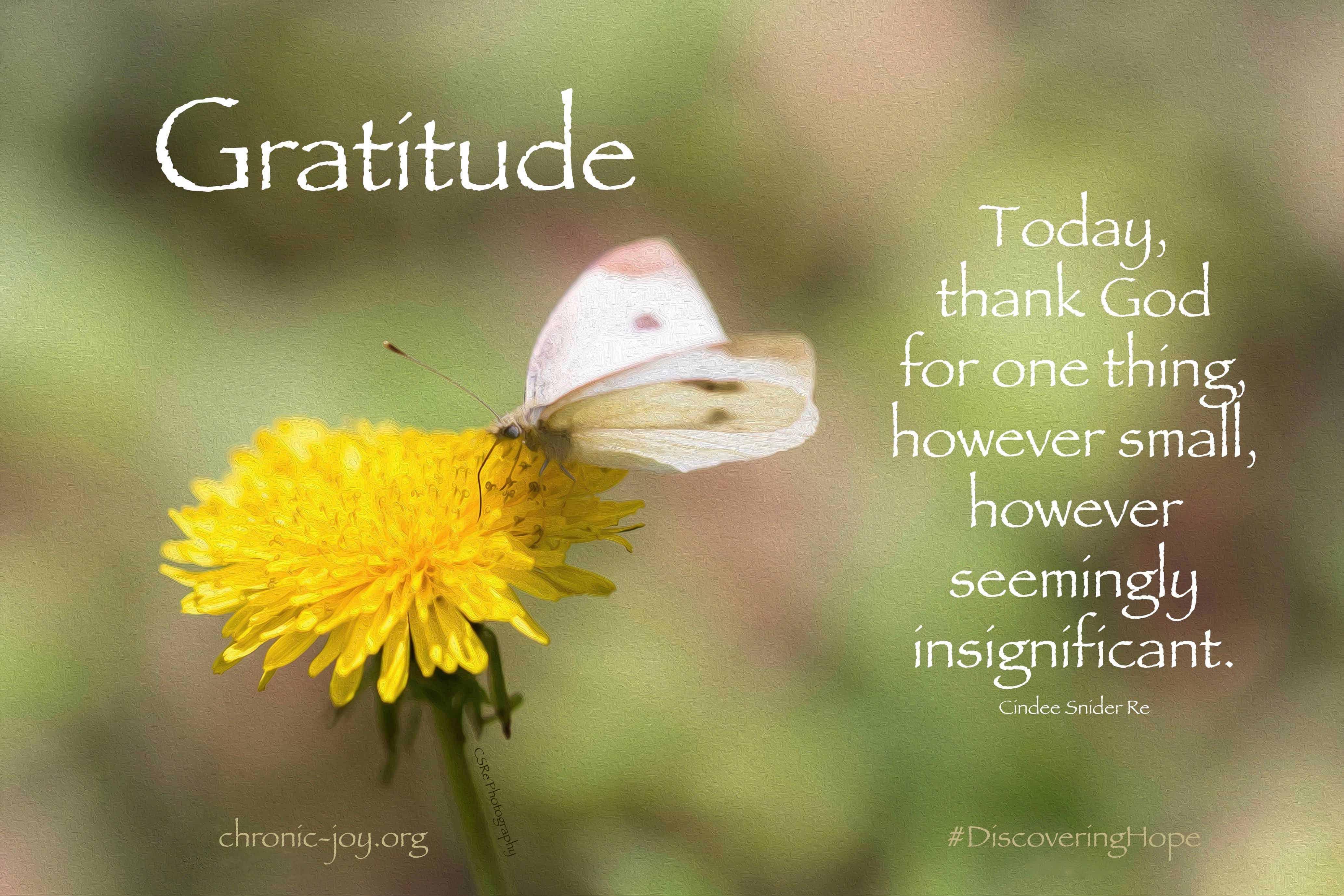 GratitudeSMALL