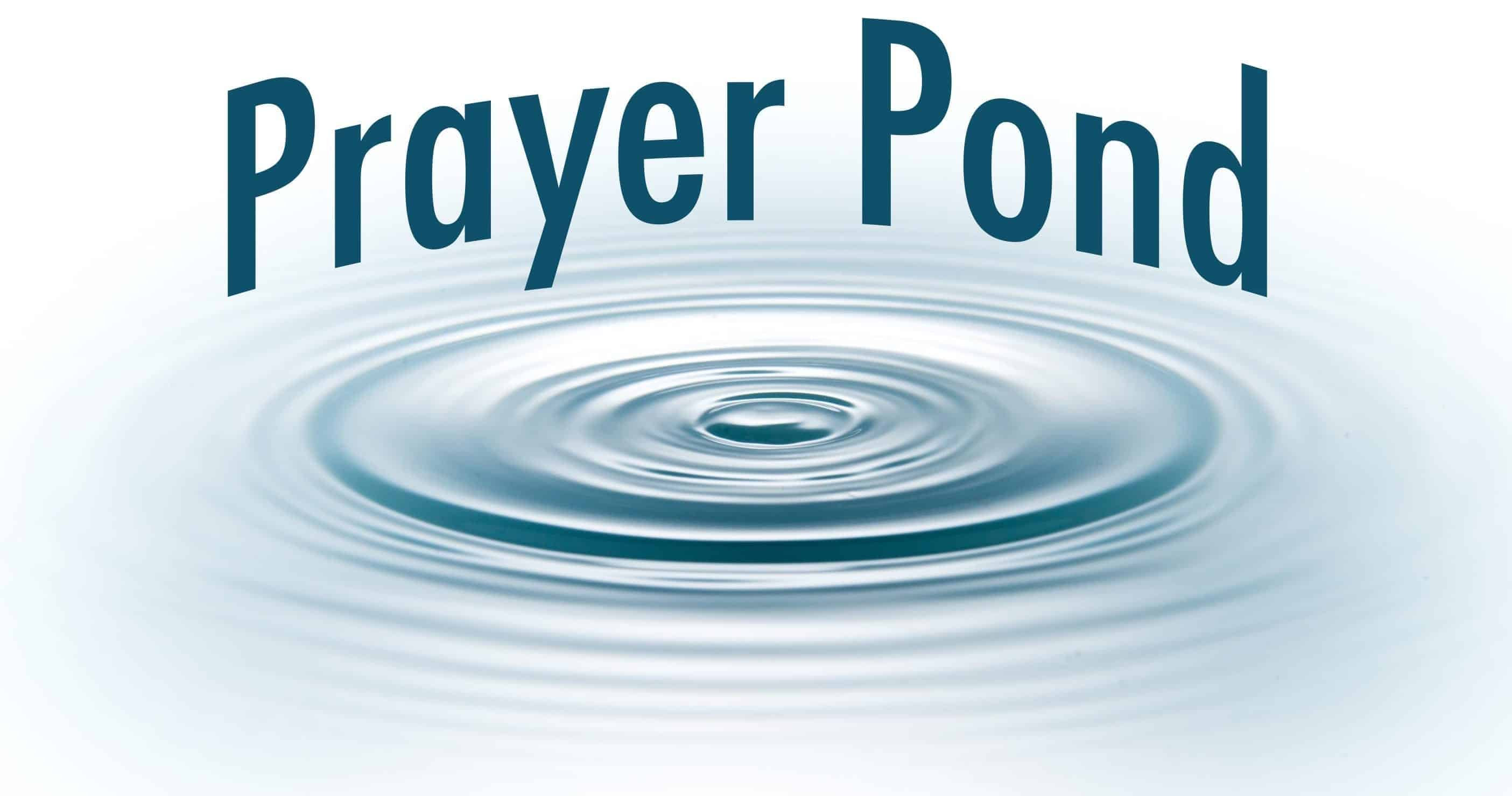 Chronic Joy's Prayer Pond