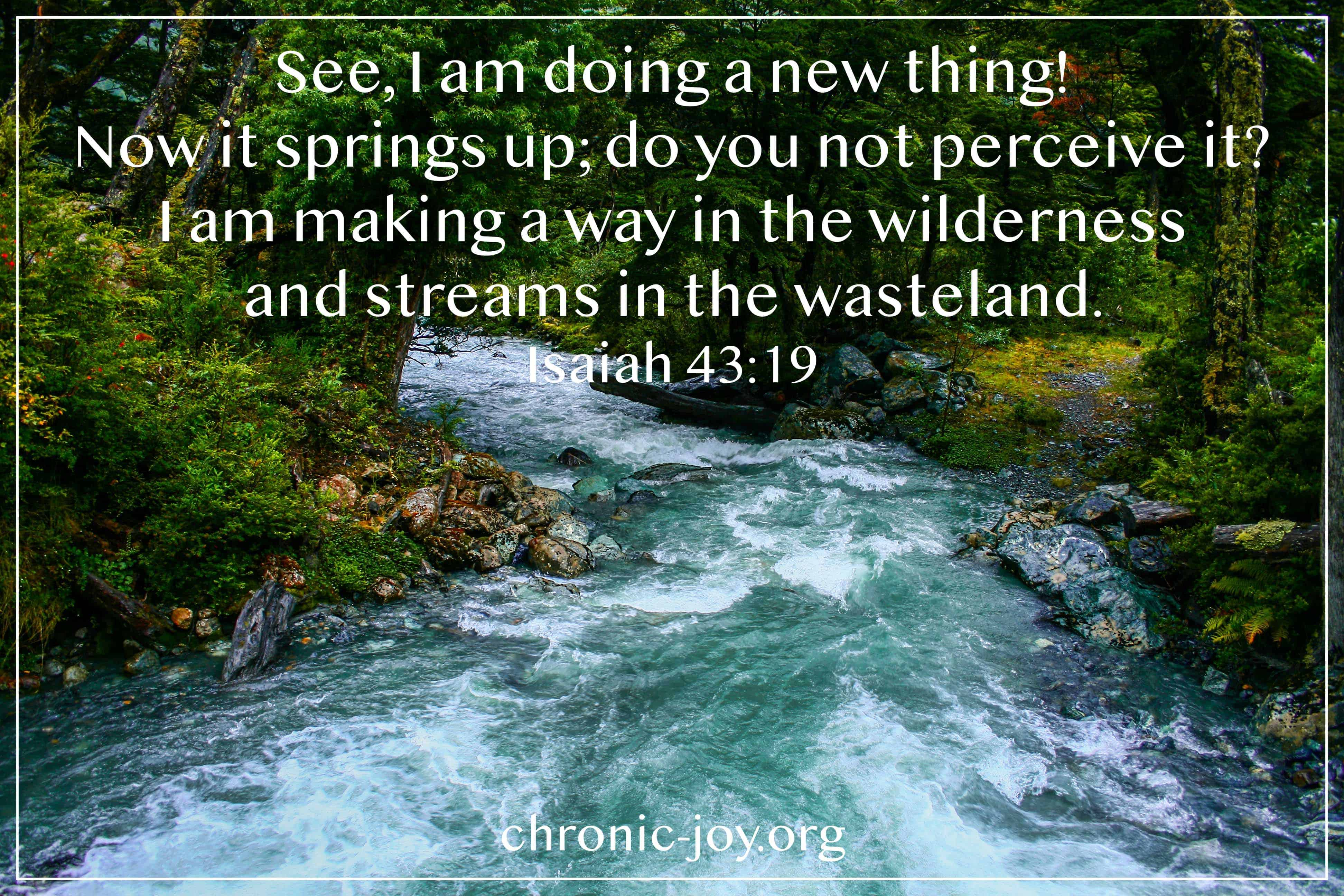 See, I am doing a new thing! Now it springs up, do you not perceive it? I am making a way in the wilderness and streams in the wasteland. Isaiah 43:19