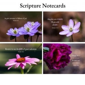 Scripture Notecards