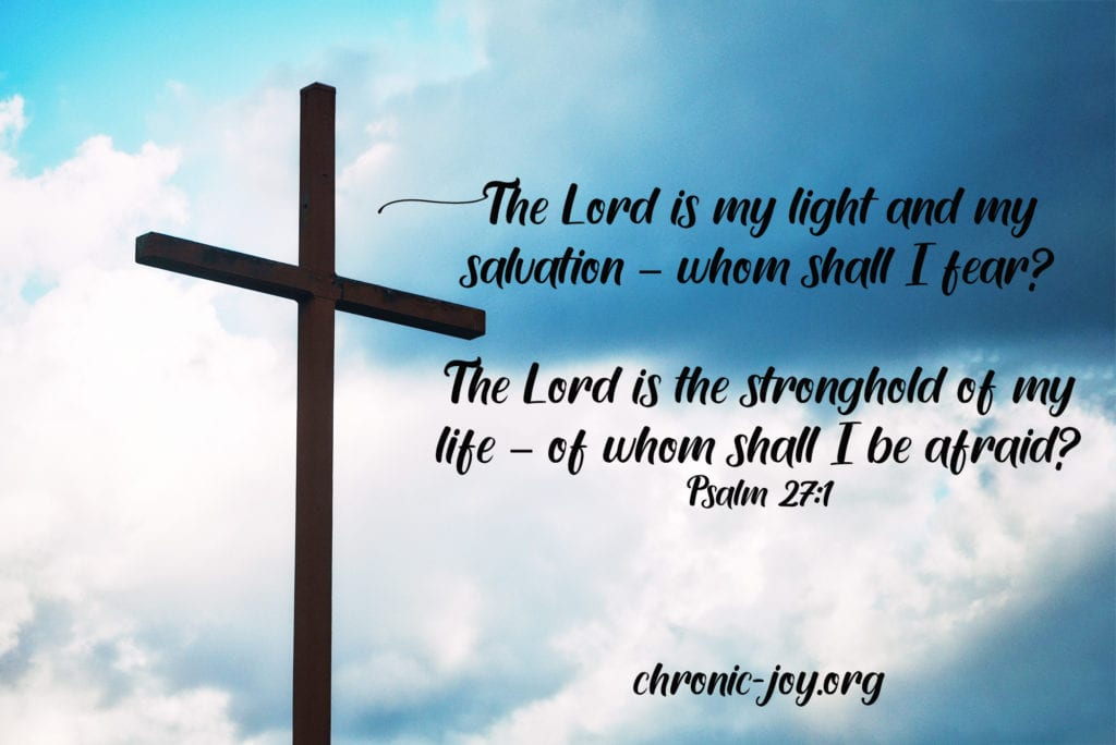 Of David. The LORD is my light and my salvation-- whom shall I fear? The LORD is the stronghold of my life-- of whom shall I be afraid? Psalm 27:1