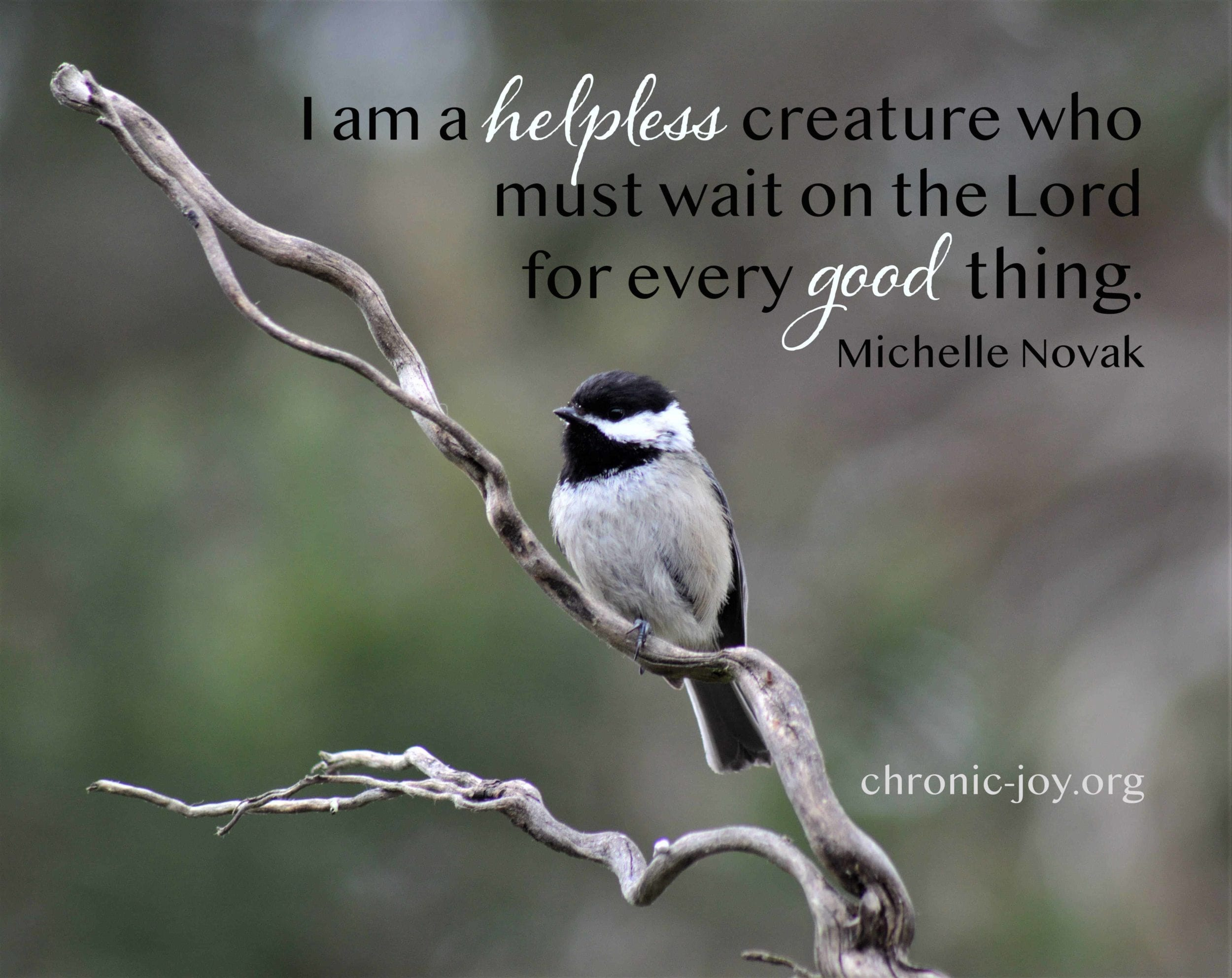 I am a helpless creature who must wait on the Lord for every good thing. Michelle Novak