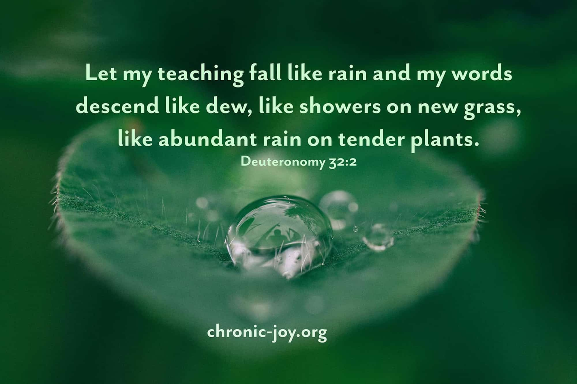 Listening to the Falling Rain • Prayer Prompt