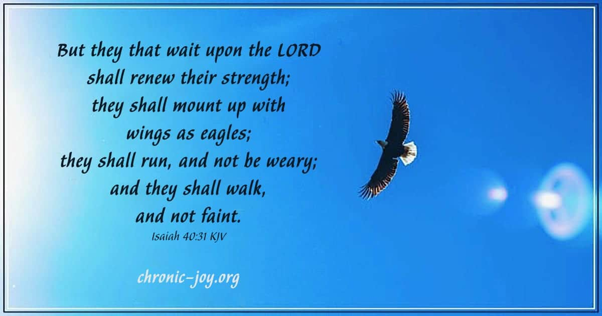 But they that wait upon the LORD shall renew their strength;