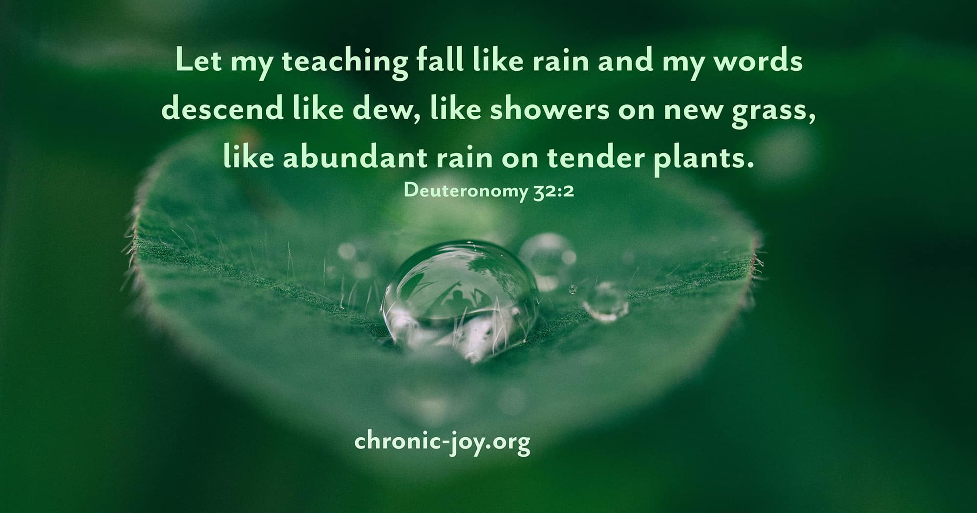 Let my teaching fall like rain