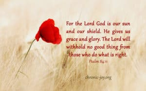 For the Lord God is our sun and our shield.