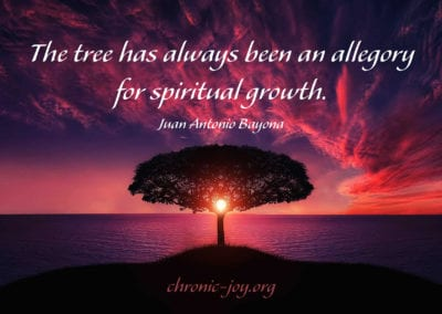 The tree has always been an allegory for spiritual growth.