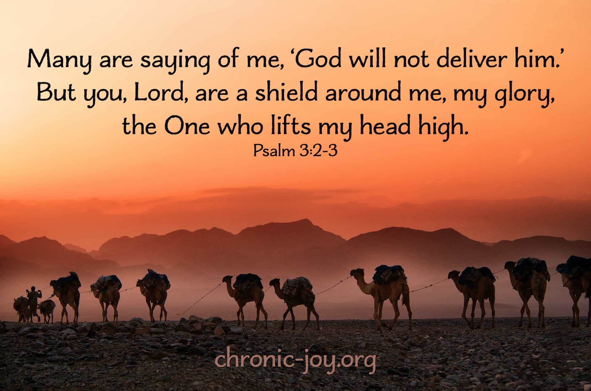 Lord, you are my shield