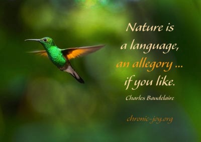 Nature is a language, an allegory.
