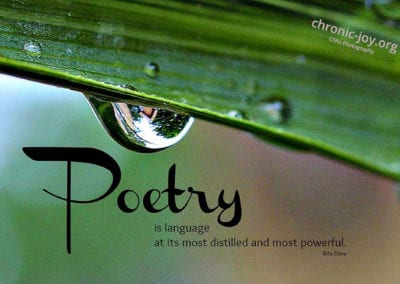 Poetry is language at its most distilled and powerful.