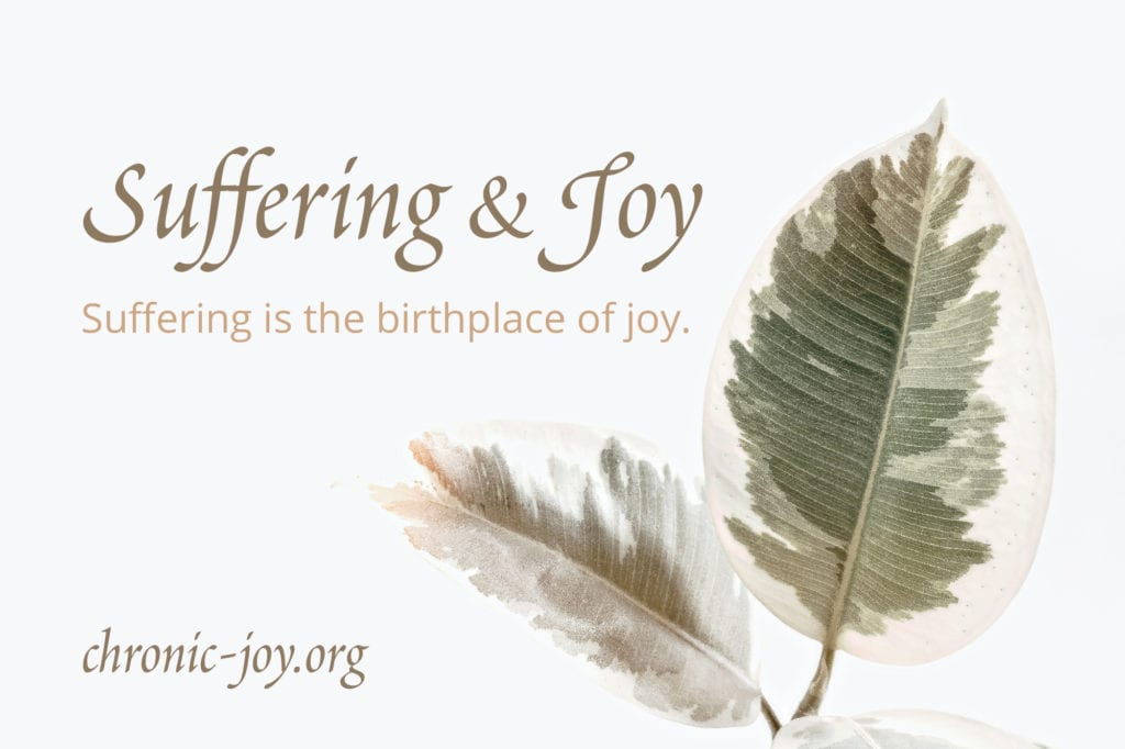 Suffering & Joy