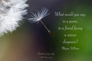 What would you say, in a poem, to a friend facing a serious diagnosis? ~ Megan Willome