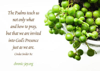 The Psalms teach us not only what and how to pray, but that we are invited into God's Presence just as we are.