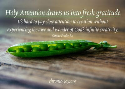 Holy Attention draws us into fresh gratitude. It's hard to pay close attention to creation without experiencing the awe and wonder of God's infinite creativity.