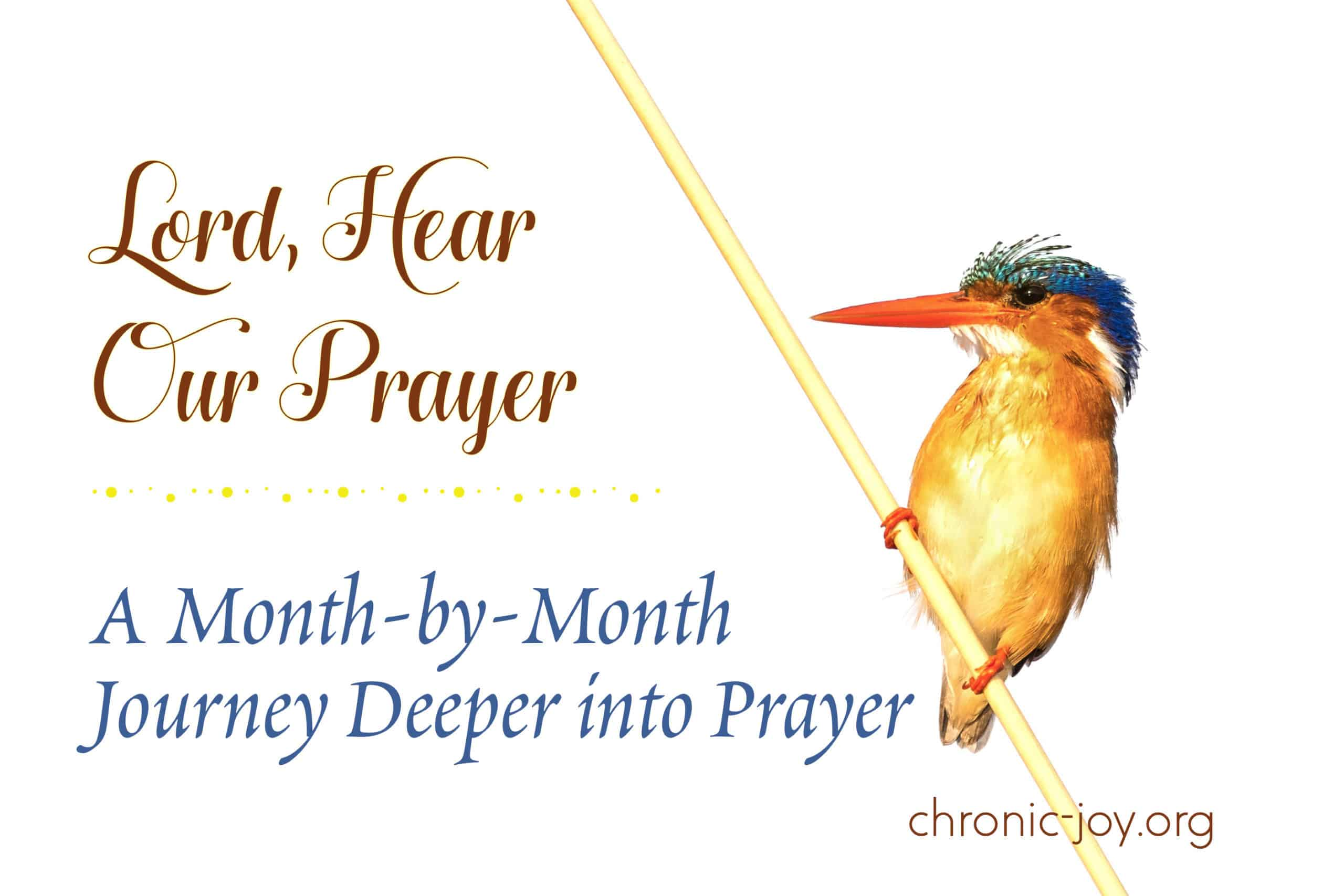 Lord, Hear Our Prayer • A Month-by-Month Journey Deeper Into Prayer