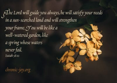 """""""The Lord will guide you always, he will satisfy your needs in a sun-scorched land and will strengthen your frame. You will be like a well-watered garden, like a spring whose waters never fail"""" Isaiah 58:11"""