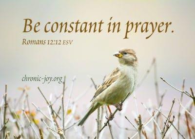 Be constant in prayer. Romans 12:12 ESV