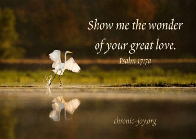 """""""Show me the wonder of your great love."""" Psalm 17:7a"""