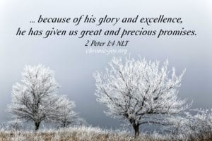 """""""... because of his glory and excellence, he has given us great and precious promises."""" 2 Peter 1:4 NLT"""
